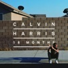 Drinking From the Bottle - Calvin Harris