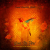 After All (Holy) - David Crowder Band