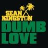 Dumb Love