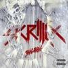 Summit - Skrillex