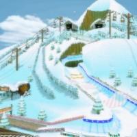 Wii DK Summit