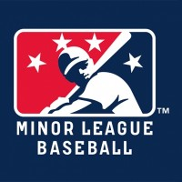 Give More Attention to Minor League Players