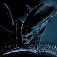 The Xenomorphs - Alien