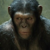 Caesar - Rise Of The Planet Of The Apes