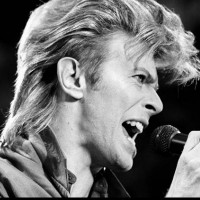 David Bowie ** Not a band