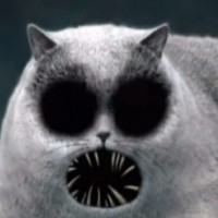 The Cat - Marvelous Misadventures of FlapJack
