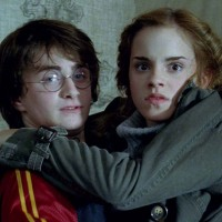 Harry and Hermione (Harry Potter)