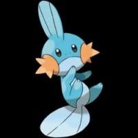 Mudkip - Pokemon Series