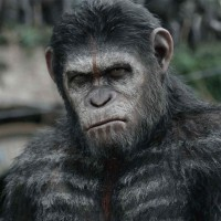 Caesar (Andy Serkis) - Dawn of the Planet of the Apes
