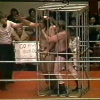 Shark Cage Match