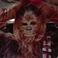 Wookies (Star Wars)